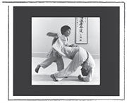 Aikido Video for Children